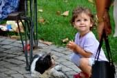היכרות כלבים ותינוקות