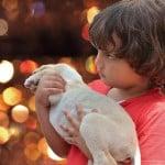 האם טיפול בסיוע בעלי חיים באמת עובד?