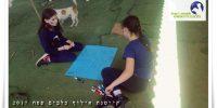 קייטנת אילוף כלבים בבית עזרא ילדות מכינות שלטים לתחרות