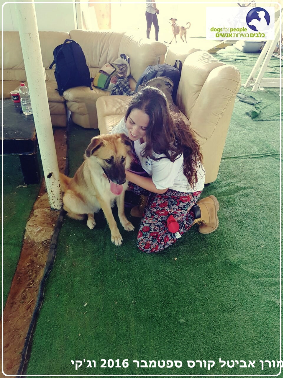 סטודנטית וכלב כנעני