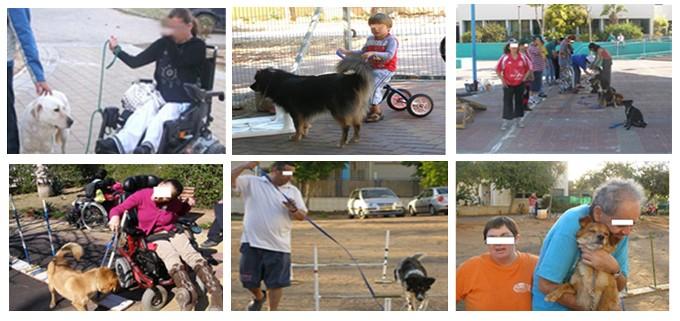 טיפול בעזרת כלבים 3