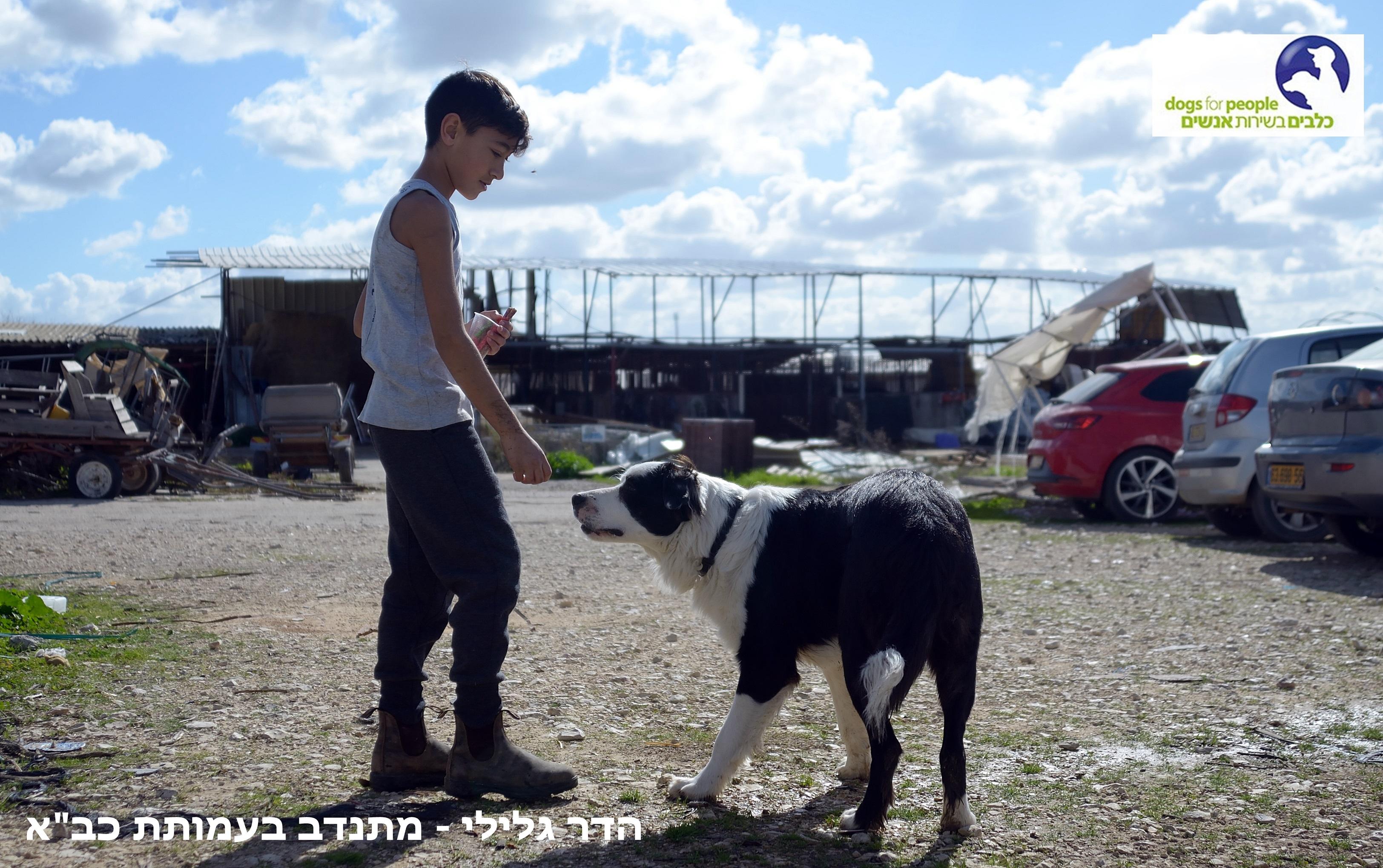 ילד משחק עם כלב