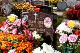 בתי הקבורה בניו יורק יאפשרו לכלבים להקבר ליד בעליהם