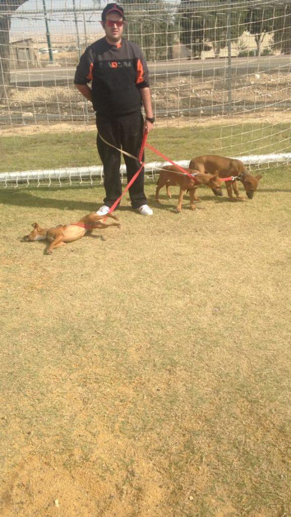 גל לביא בוגר כלבנות 2015 מצולם עומד בשער כדורגל עם 3 כלבים קשורים ברצועות.